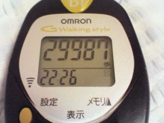 2009年11月20日の歩数